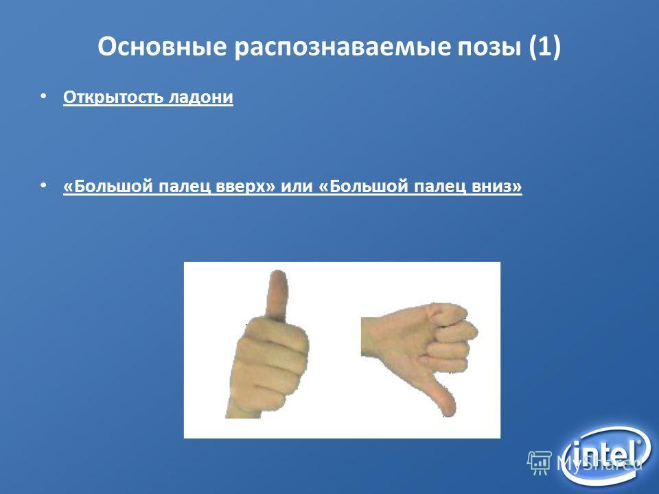 Основные распознаваемые позы (1) Открытость ладони «Большой палец вверх» или «Большой палец вниз»