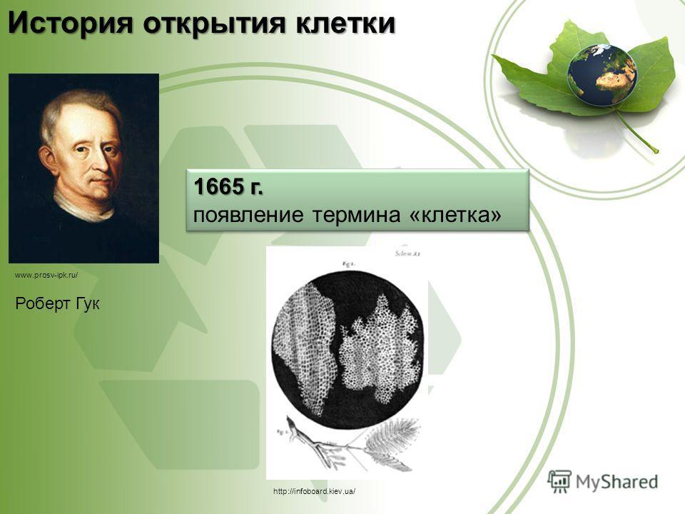 http://infoboard.kiev.ua/ www.prosv-ipk.ru/ История открытия клетки Роберт Гук 1665 г. появление термина «клетка» 1665 г. появление термина «клетка»