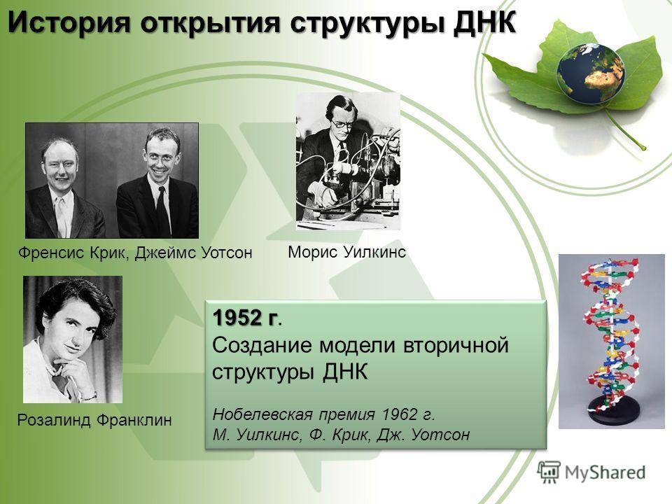 История открытия структуры ДНК Френсис Крик, Джеймс Уотсон Морис Уилкинс Розалинд Франклин 1952 г 1952 г. Создание модели вторичной структуры ДНК Нобелевская премия 1962 г. М. Уилкинс, Ф. Крик, Дж. Уотсон 1952 г 1952 г. Создание модели вторичной стру