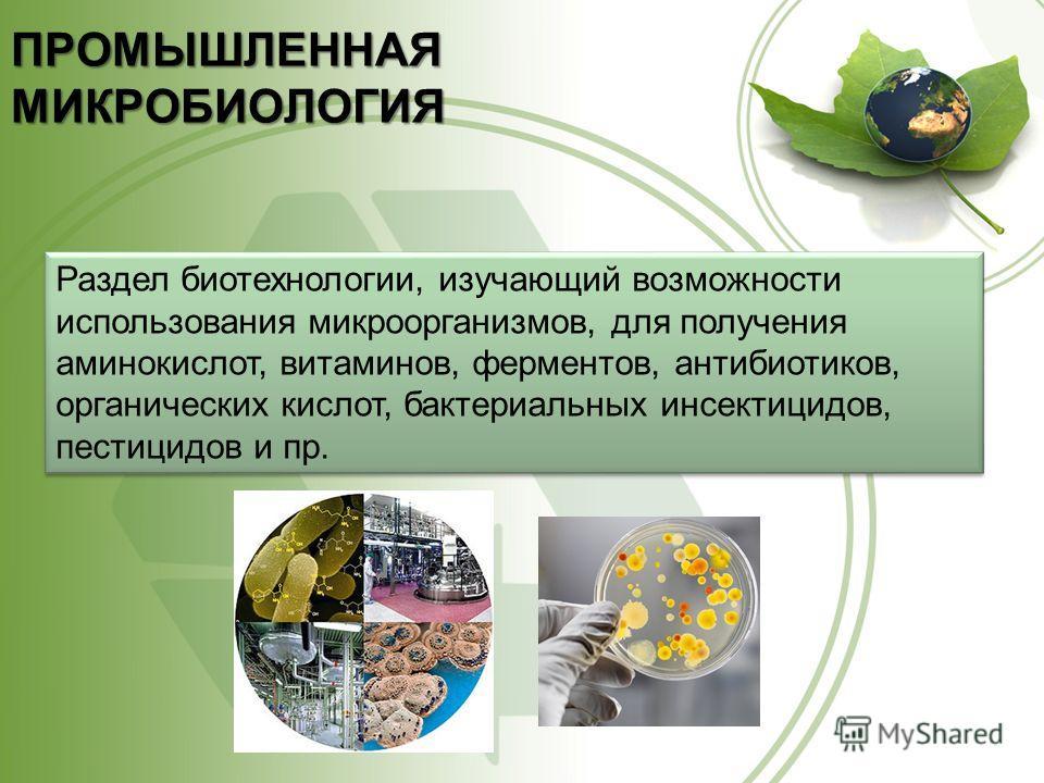 ПРОМЫШЛЕННАЯ МИКРОБИОЛОГИЯ Раздел биотехнологии, изучающий возможности использования микроорганизмов, для получения аминокислот, витаминов, ферментов, антибиотиков, органических кислот, бактериальных инсектицидов, пестицидов и пр.