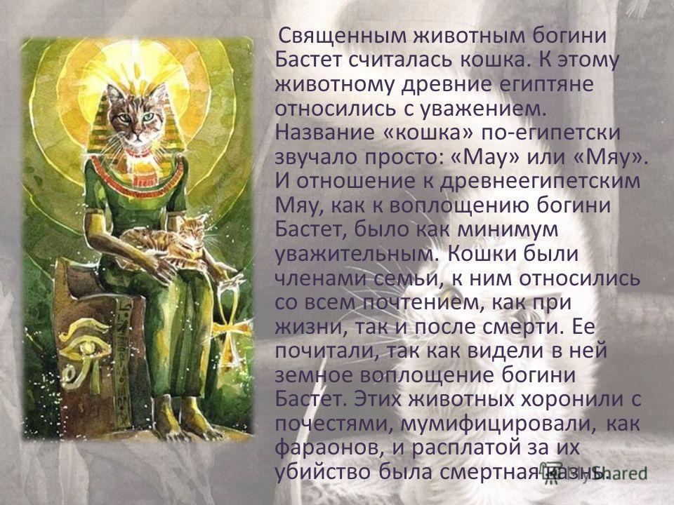 Часто богиню изображали в виде женщины с головой кошки, держащей в руках систр, а у её ног располагались четыре котёнка. Часто богиню изображали в виде женщины с головой кошки, держащей в руках систр, а у её ног располагались четыре котёнка.систр