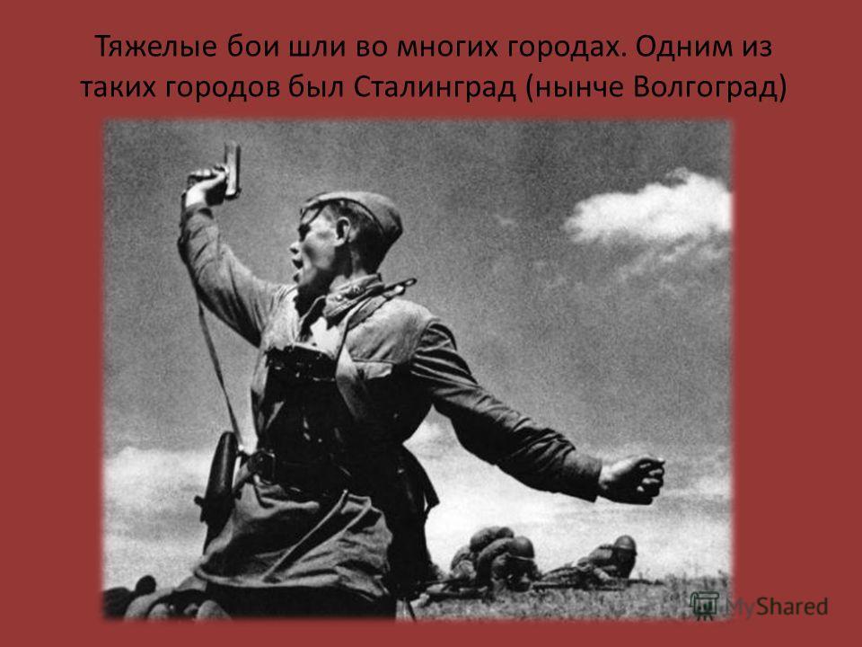 Тяжелые бои шли во многих городах. Одним из таких городов был Сталинград (нынче Волгоград)
