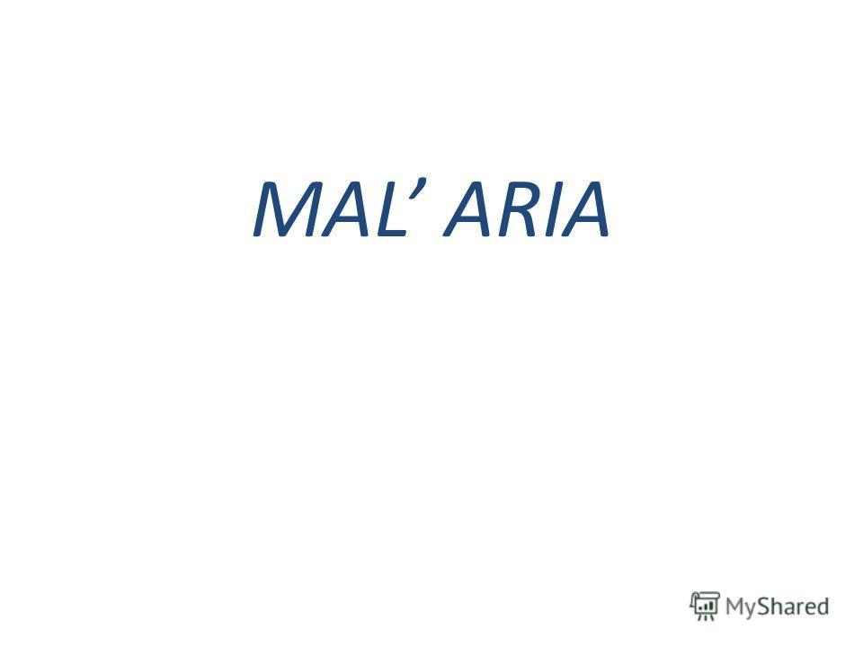 MAL ARIA