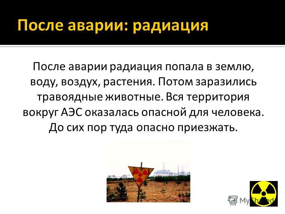 После аварии радиация попала в землю, воду, воздух, растения. Потом заразились травоядные животные. Вся территория вокруг АЭС оказалась опасной для человека. До сих пор туда опасно приезжать.