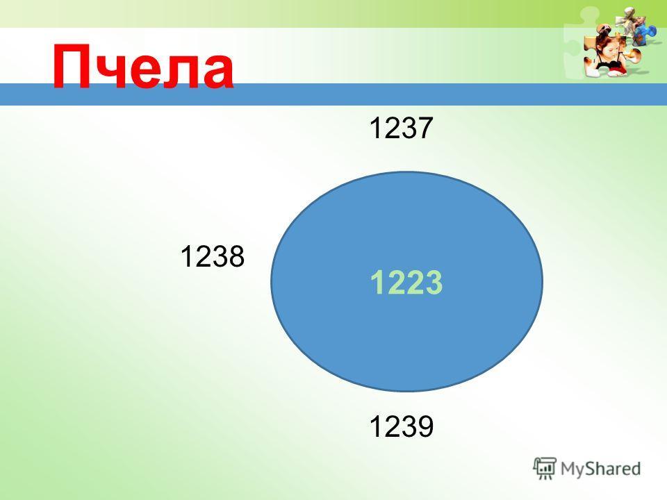 Пчела 1237 1238 1239 1223