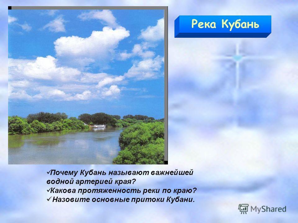 Почему Кубань называют важнейшей водной артерией края? Какова протяженность реки по краю? Назовите основные притоки Кубани. Река Кубань