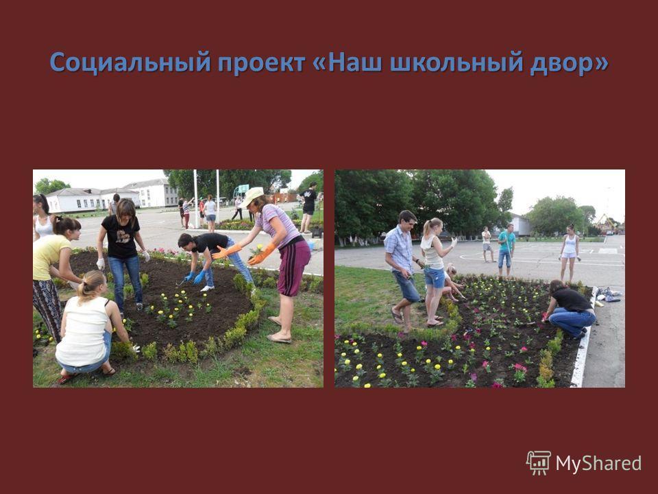 Социальный проект «Наш школьный двор»