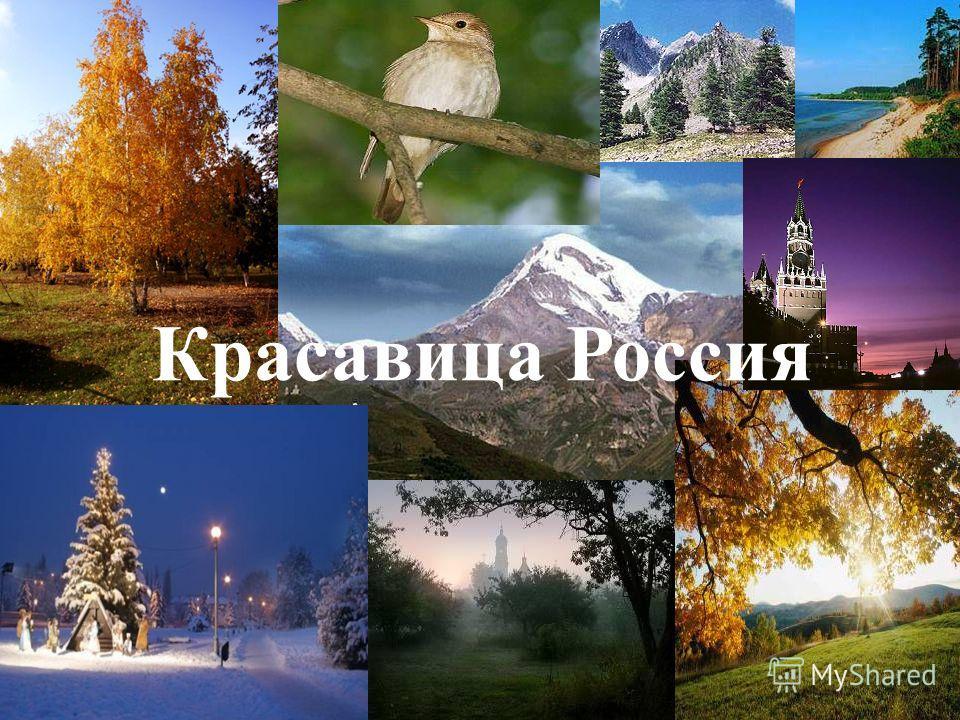Красавица Россия