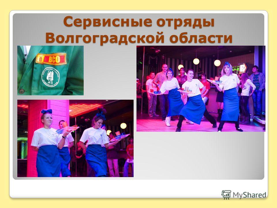 Сервисные отряды Волгоградской области