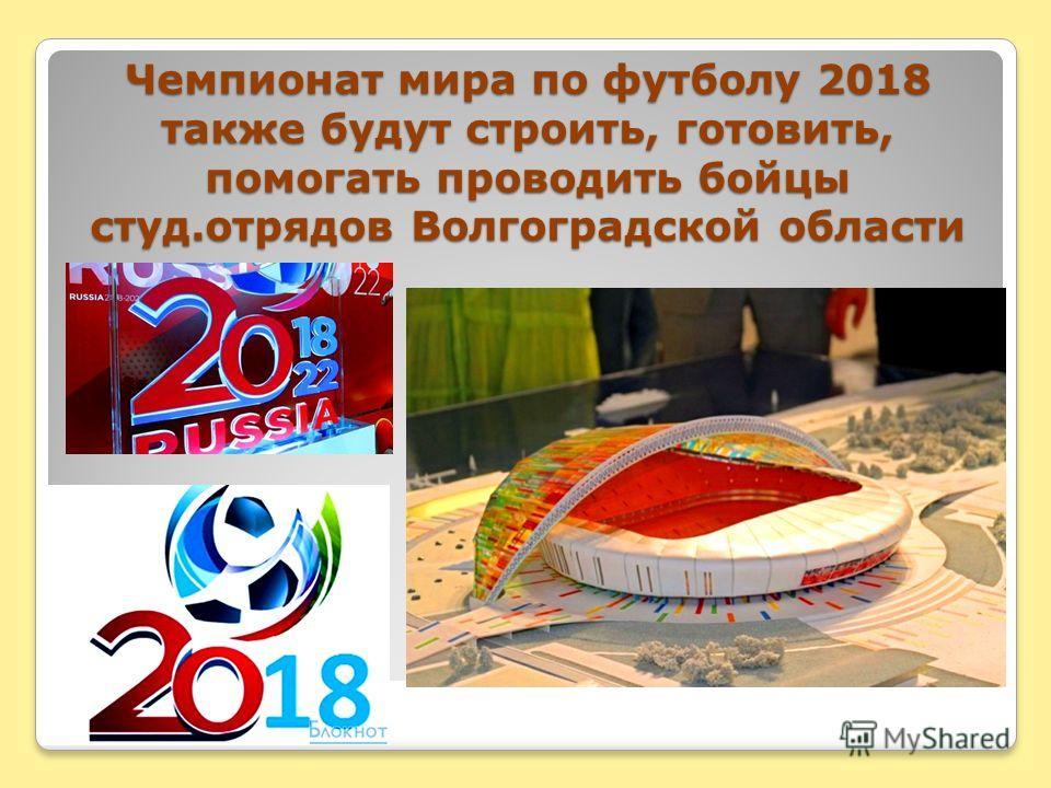 Чемпионат мира по футболу 2018 также будут строить, готовить, помогать проводить бойцы студ.отрядов Волгоградской области