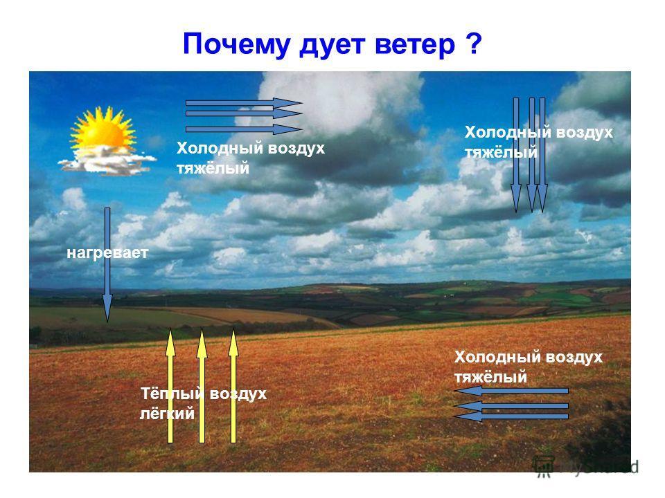 Почему дует ветер ? Тёплый воздух лёгкий Холодный воздух тяжёлый нагревает Холодный воздух тяжёлый Холодный воздух тяжёлый
