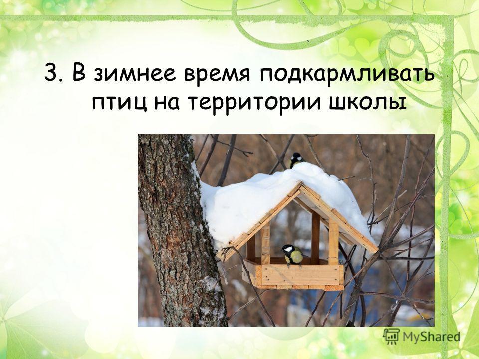 3. В зимнее время подкармливать птиц на территории школы