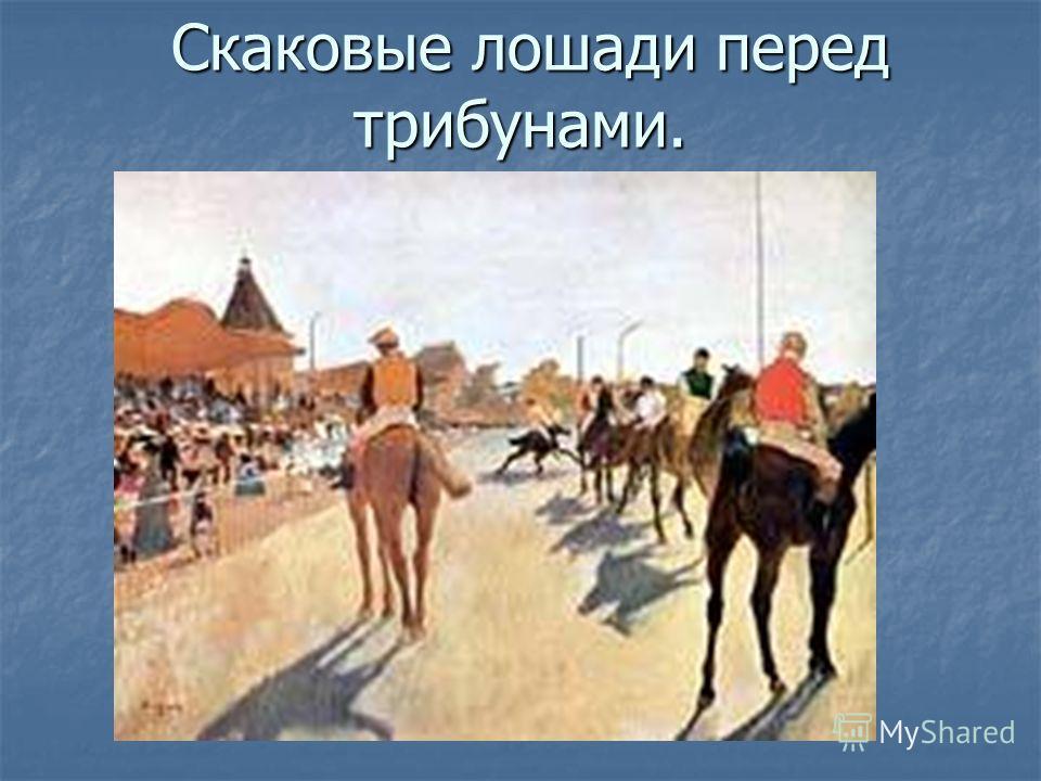 Скаковые лошади перед трибунами. Скаковые лошади перед трибунами.