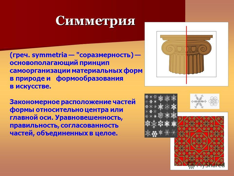 Симметрия (греч. symmetria