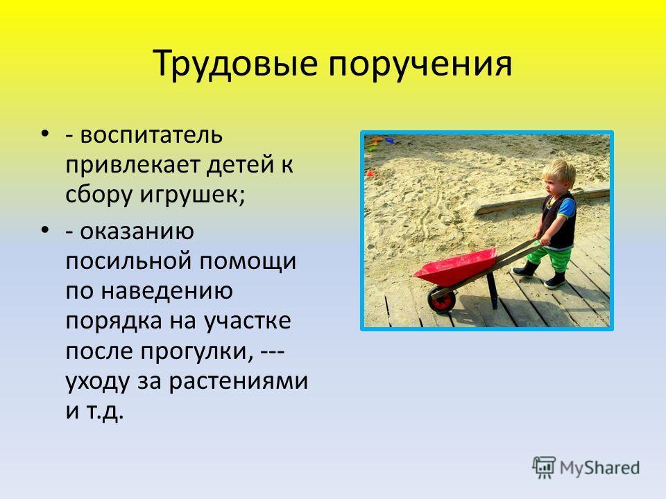 Трудовые поручения - воспитатель привлекает детей к сбору игрушек; - оказанию посильной помощи по наведению порядка на участке после прогулки, --- уходу за растениями и т.д.