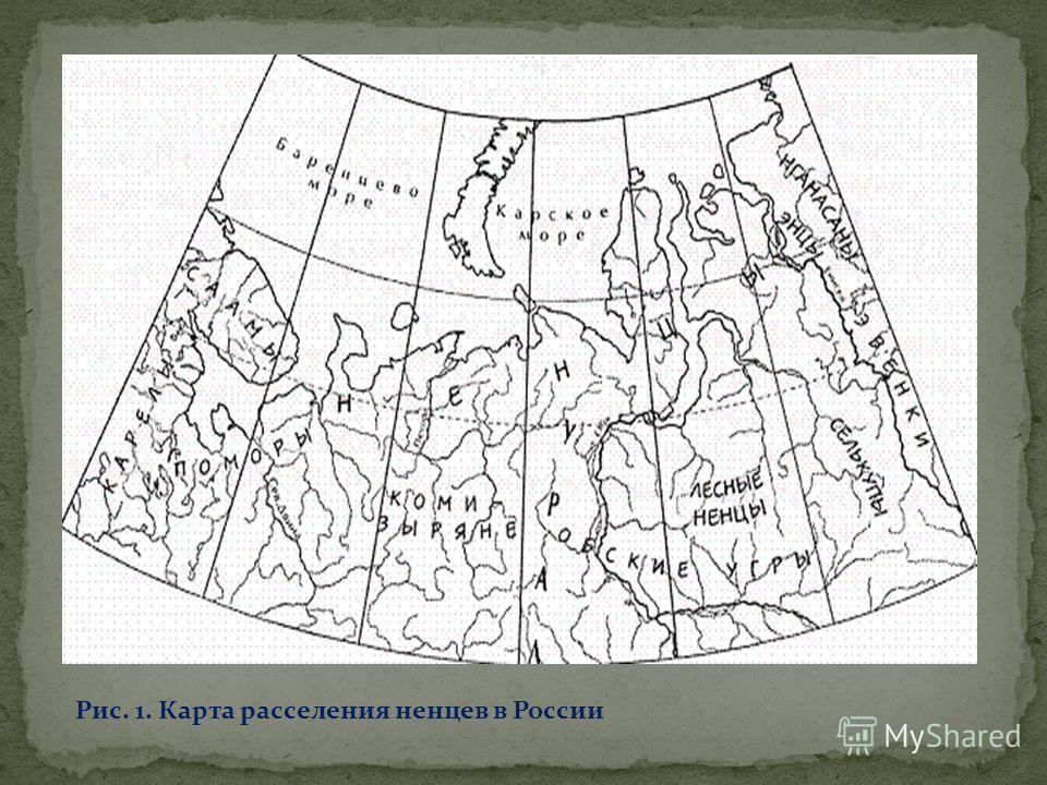 Рис. 1. Карта расселения ненцев в России