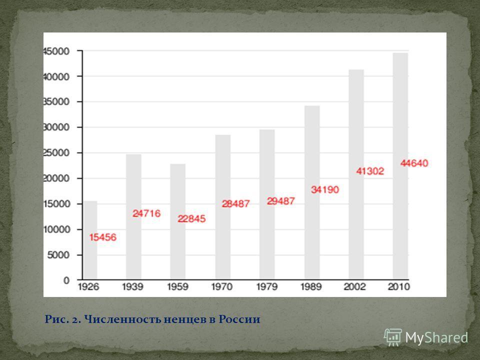 Рис. 2. Численность ненцев в России