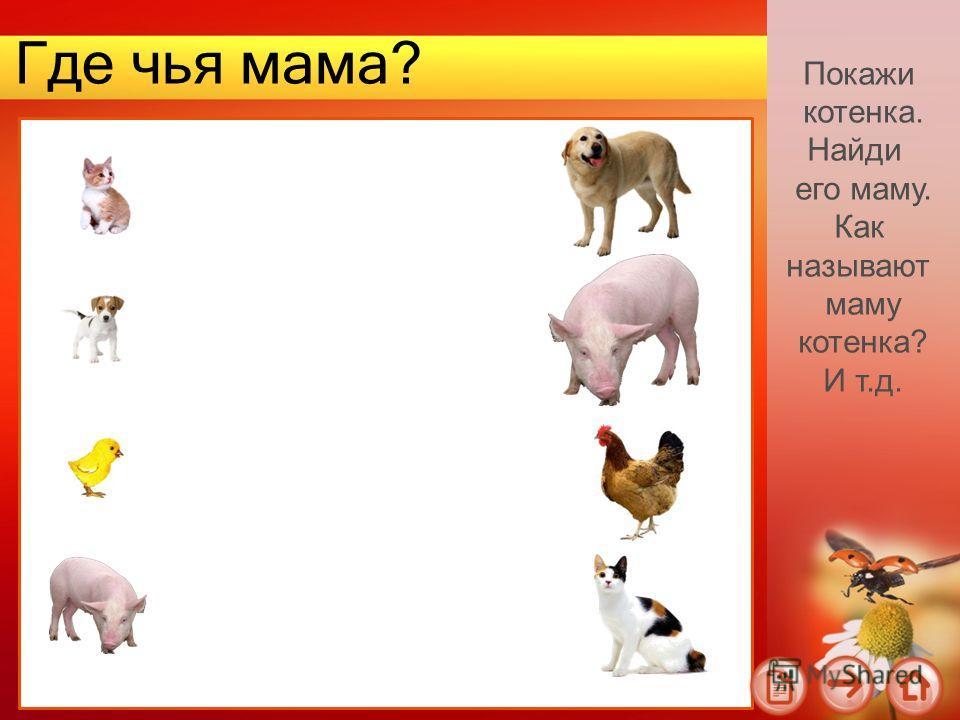 Где чья мама? Покажи котенка. Найди его маму. Как называют маму котенка? И т.д.