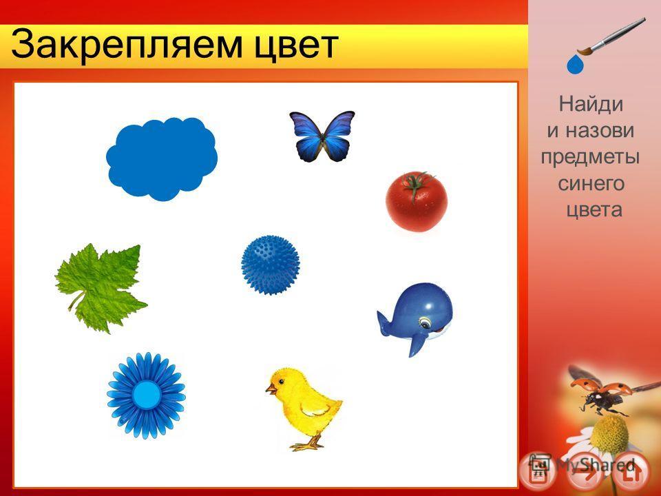 Закрепляем цвет Найди и назови предметы синего цвета