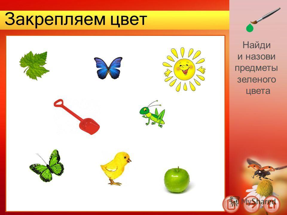 Закрепляем цвет Найди и назови предметы зеленого цвета