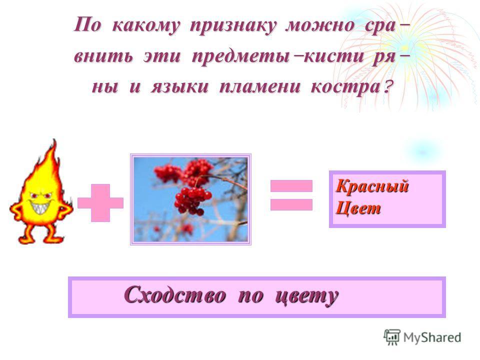 По какому признаку можно сравнить эти предметы - кисти ря - ны и языки пламени костра ? Сходство по цвету Красный Цвет