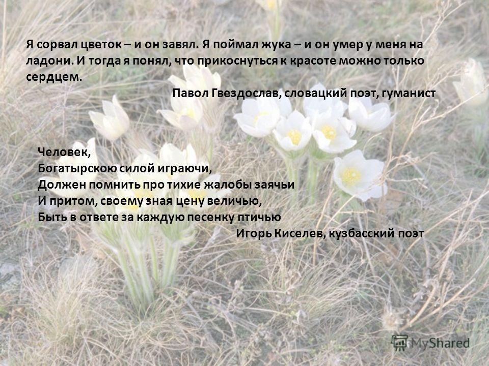 Я сорвал цветок – и он завял. Я поймал жука – и он умер у меня на ладони. И тогда я понял, что прикоснуться к красоте можно только сердцем. Павол Гвездослав, словацкий поэт, гуманист Человек, Богатырскою силой играючи, Должен помнить про тихие жалобы