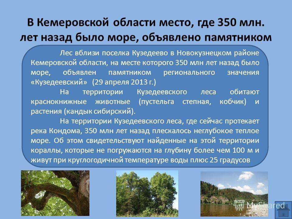 В Кемеровской области место, где 350 млн. лет назад было море, объявлено памятником Лес вблизи поселка Кузедеево в Новокузнецком районе Кемеровской области, на месте которого 350 млн лет назад было море, объявлен памятником регионального значения «Ку
