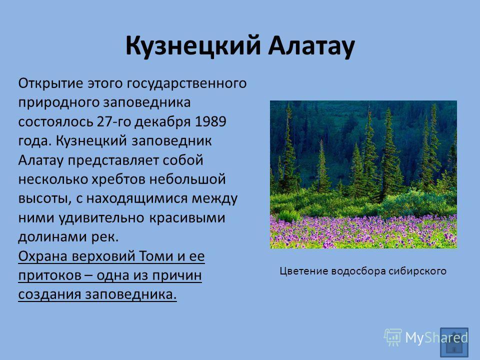Кузнецкий Алатау Открытие этого государственного природного заповедника состоялось 27-го декабря 1989 года. Кузнецкий заповедник Алатау представляет собой несколько хребтов небольшой высоты, с находящимися между ними удивительно красивыми долинами ре