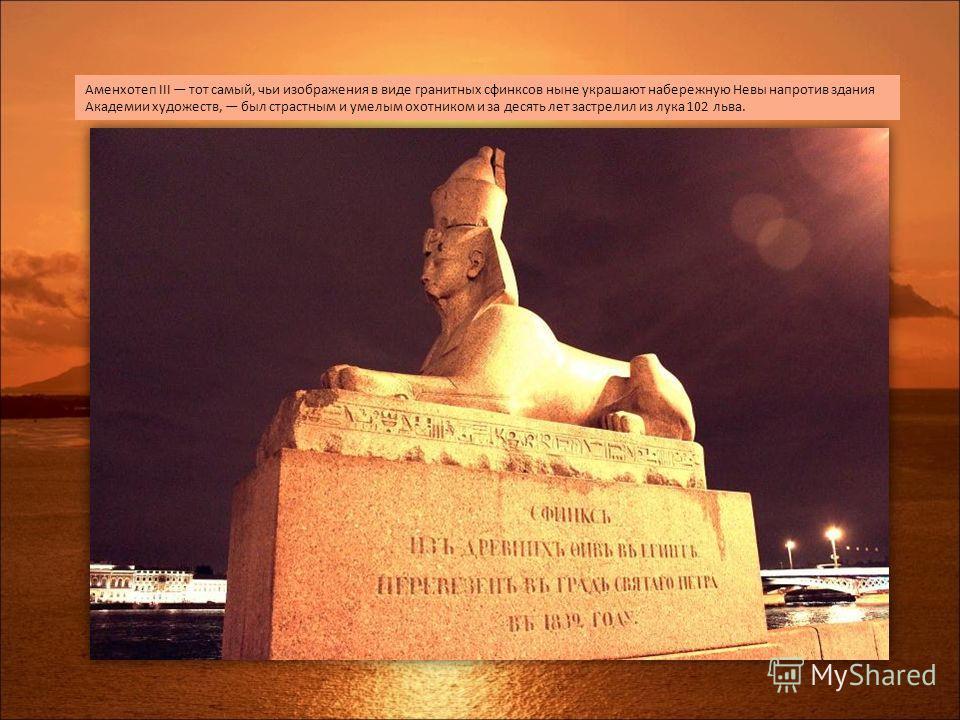 Аменхотеп III тот самый, чьи изображения в виде гранитных сфинксов ныне украшают набережную Невы напротив здания Академии художеств, был страстным и умелым охотником и за десять лет застрелил из лука 102 льва.