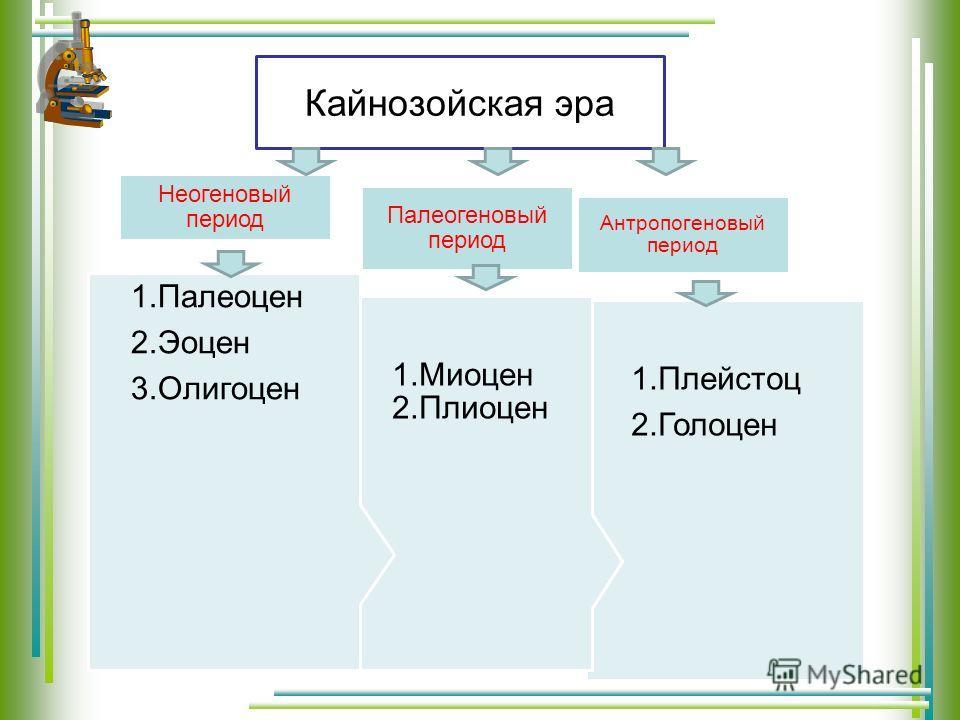 Кайнозойская эра 1. Плейстоц 2. Голоцен Антропогеновый период 1. Миоцен 2. Плиоцен Палеогеновый период 1. Палеоцен 2. Эоцен 3. Олигоцен Неогеновый период