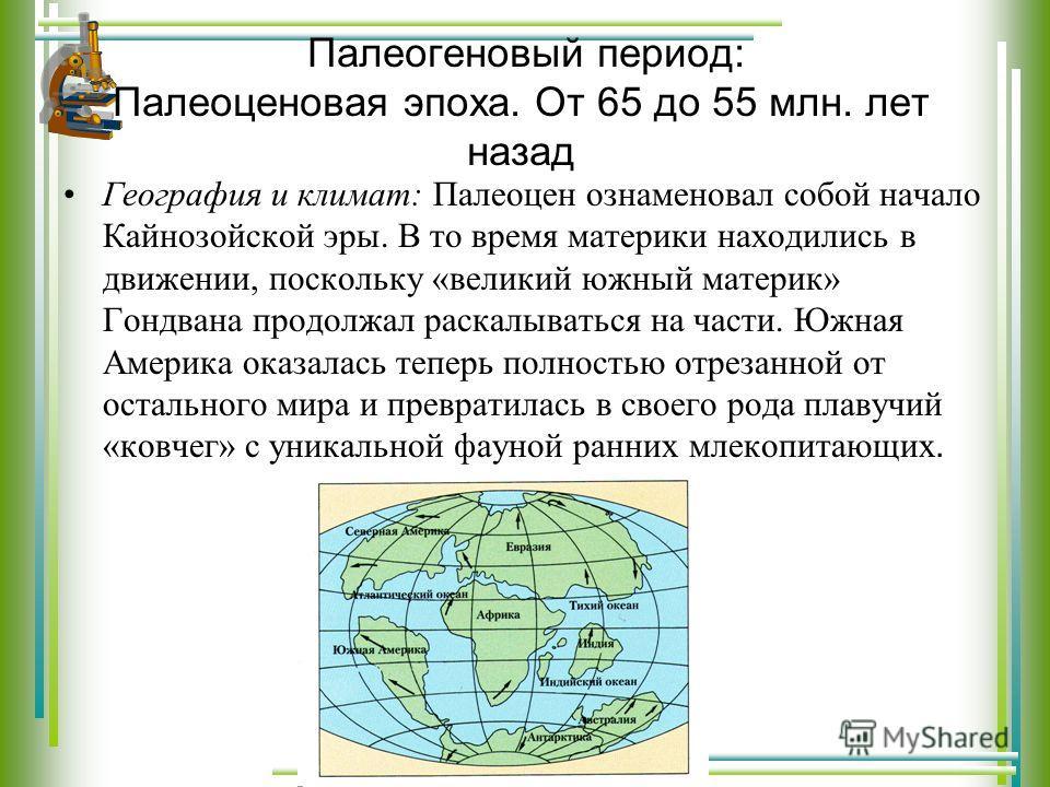 Палеогеновый период: Палеоценовая эпоха. От 65 до 55 млн. лет назад География и климат: Палеоцен ознаменовал собой начало Кайнозойской эры. В то время материки находились в движении, поскольку «великий южный материк» Гондвана продолжал раскалываться