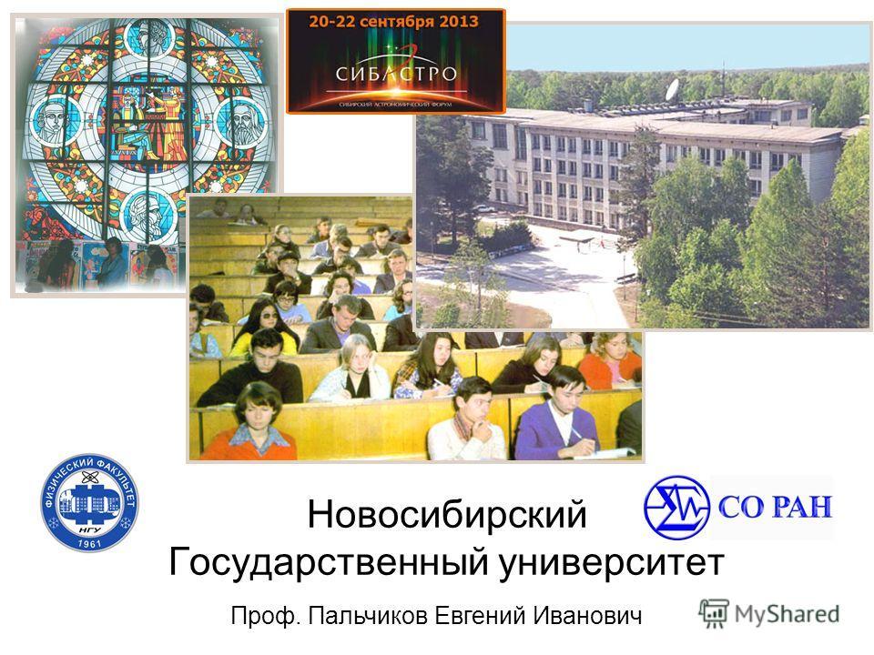 Новосибирский Государственный университет Проф. Пальчиков Евгений Иванович