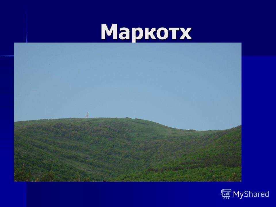 Маркотх