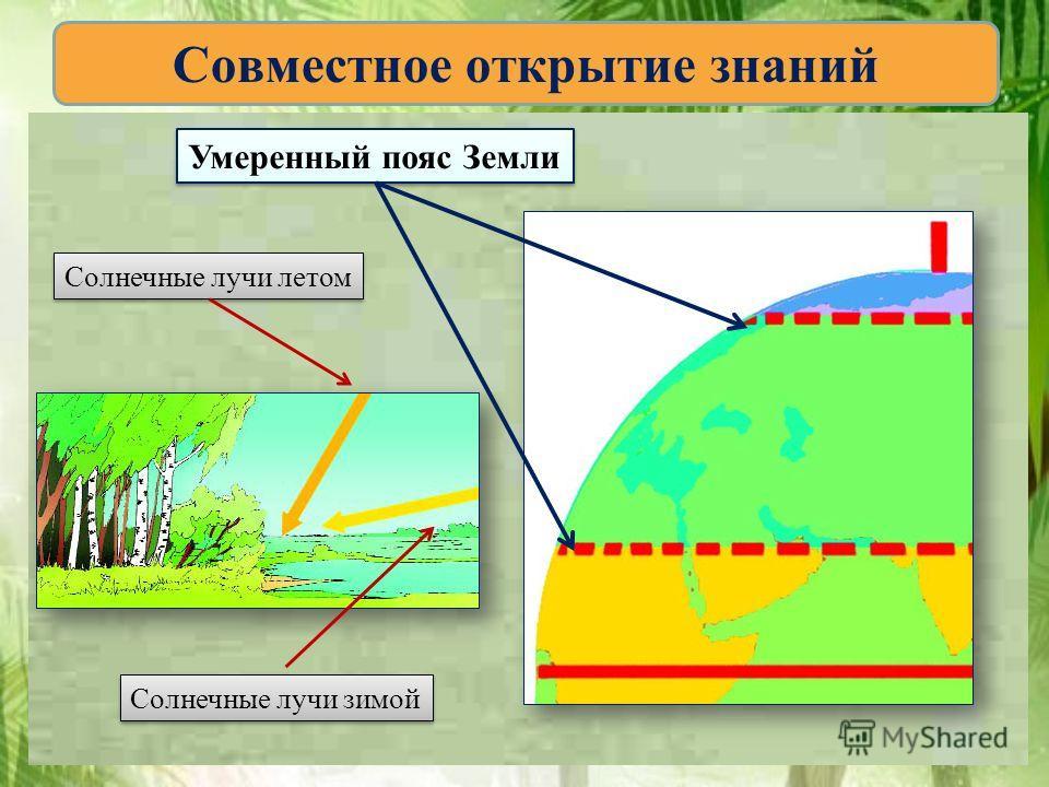 Совместное открытие знаний Умеренный пояс Земли Солнечные лучи летом Солнечные лучи зимой
