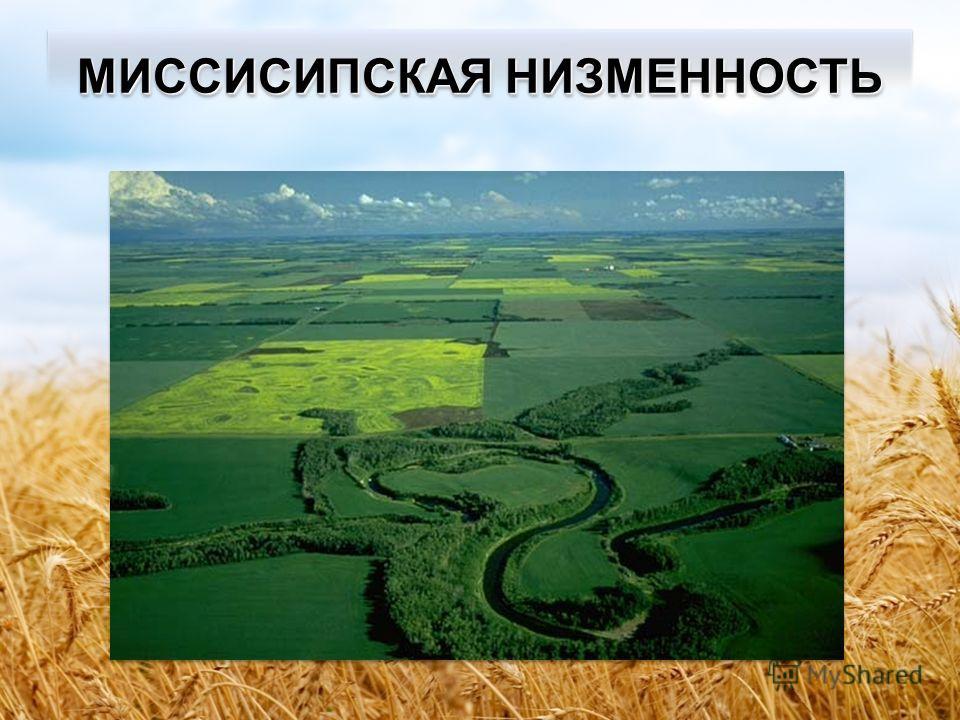 Равнины материка ВеликиеЦентральные