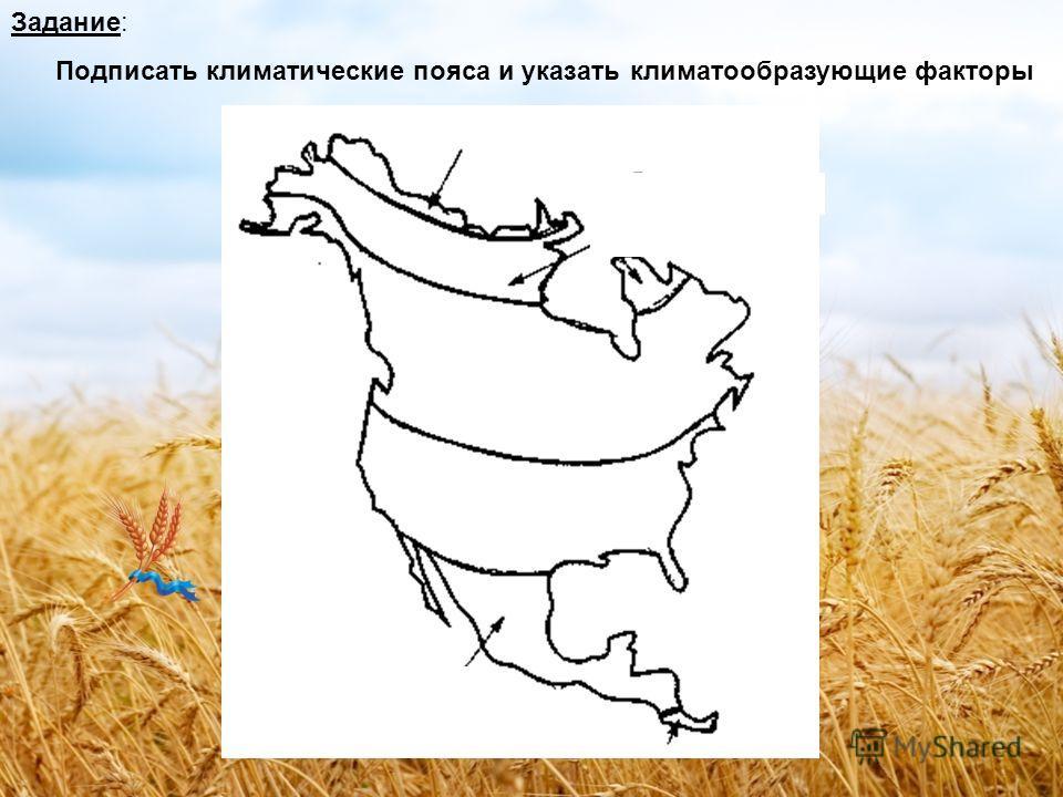 В каких климатических поясах находится Северная Америка?
