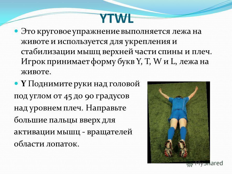 YTWL Это круговое упражнение выполняется лежа на животе и используется для укрепления и стабилизации мышц верхней части спины и плеч. Игрок принимает форму букв Y, T, W и L, лежа на животе. Y Поднимите руки над головой под углом от 45 до 90 градусов