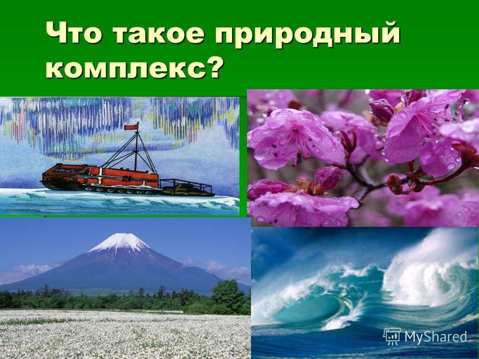 Что такое природный комплекс?