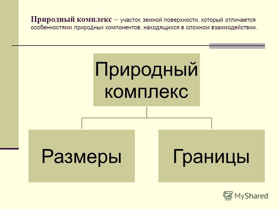 Природный комплекс – участок земной поверхности, который отличается особенностями природных компонентов, находящихся в сложном взаимодействии. Природный комплекс Размеры Границы