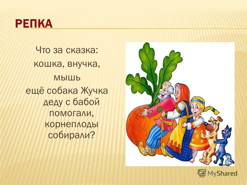 РЕПКА Что за сказка: кошка, внучка, мышь ещё собака Жучка деду с бабой помогали, корнеплоды собирали?