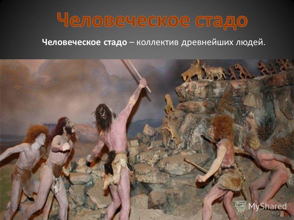 Человеческое стадо – коллектив древнейших людей.