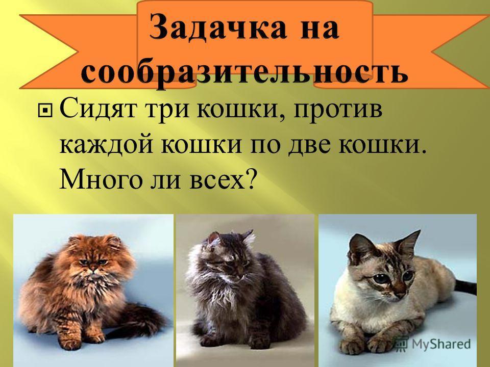 Сидят три кошки, против каждой кошки по две кошки. Много ли всех ?