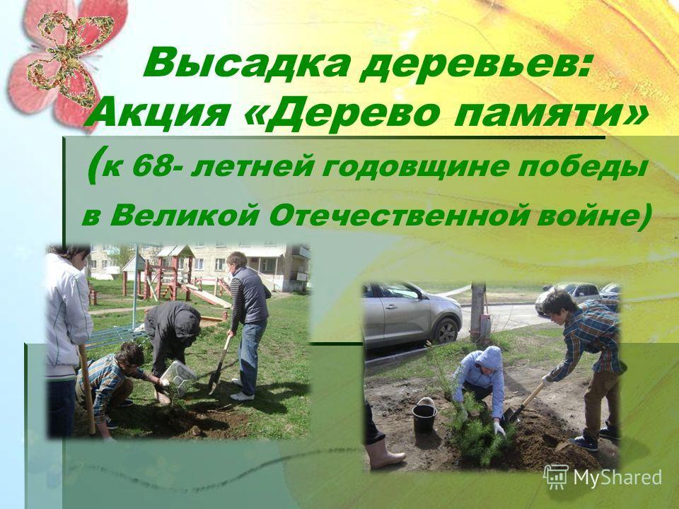 Ремонт детской площадки МАДОУ «Детский сад 49»