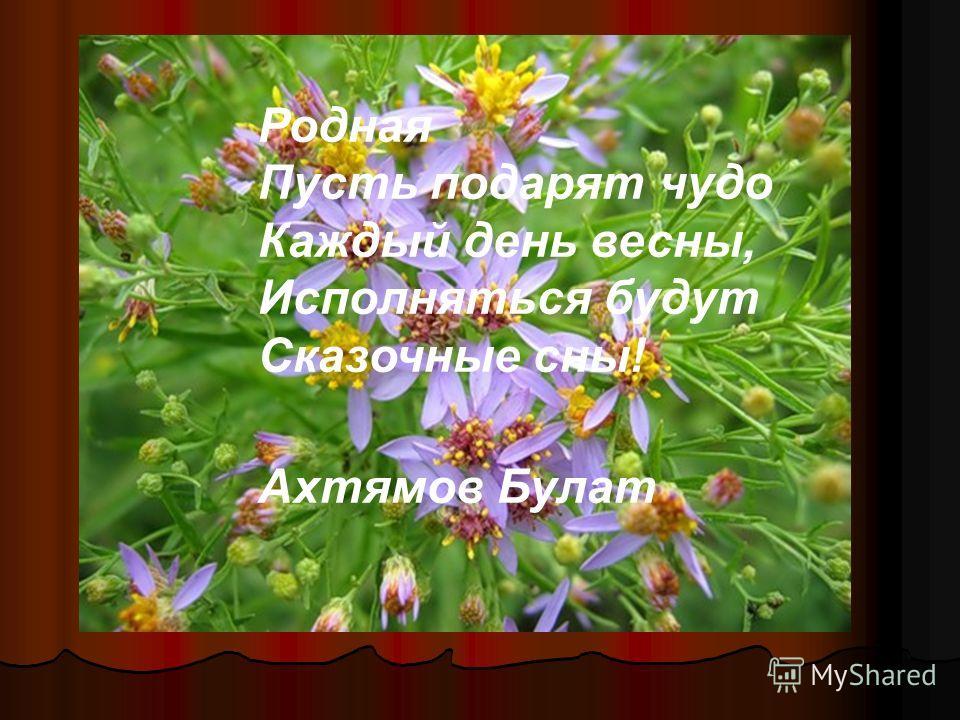 Родная Пусть подарят чудо Каждый день весны, Исполняться будут Сказочные сны! Ахтямов Булат
