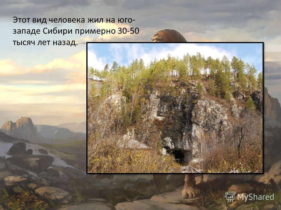 Этот вид человека жил на юго- западе Сибири примерно 30-50 тысяч лет назад.