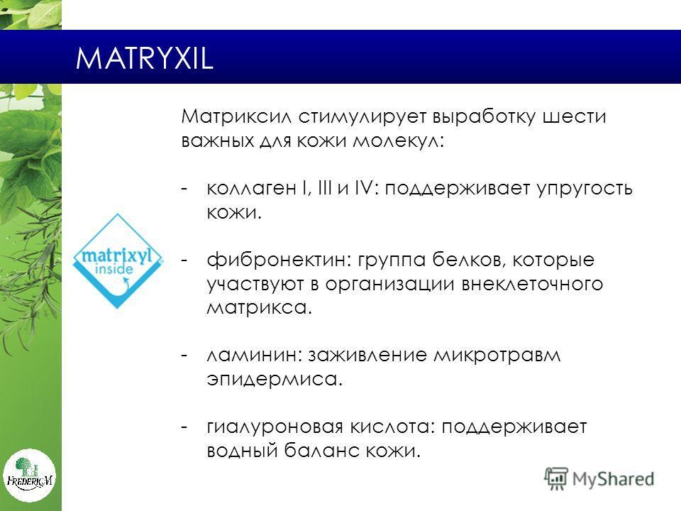 MATRYXIL Матриксил стимулирует выработку шести важных для кожи молекул: -коллаген I, III и IV: поддерживает упругость кожи. -фибронектин: группа белков, которые участвуют в организации внеклеточного матрикса. -малинин: заживление микротравм эпидермис
