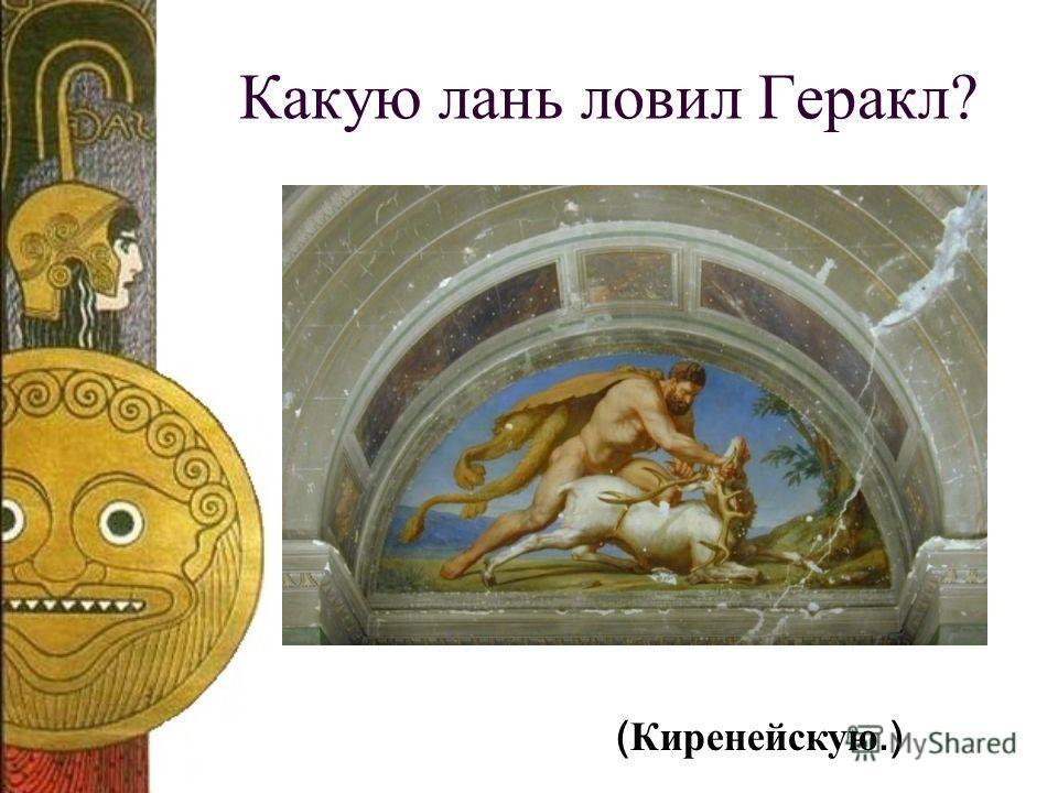 Какую лань ловил Геракл? ( Киренейскую.)