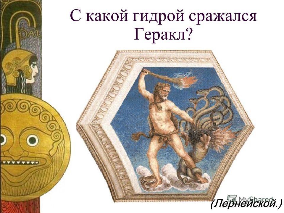 С какой гидрой сражался Геракл? (Лернейской.)