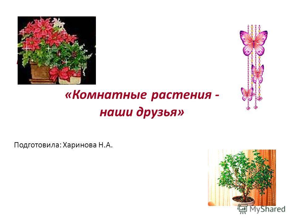 Проект «Комнатные растения - наши друзья» Подготовила: Харинова Н.А.