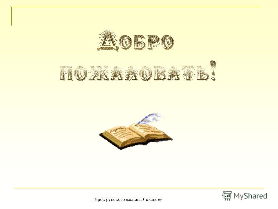 «Урок русского языка в 5 классе»